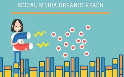 Understanding Organic Reach l How you can gain audience - Biz Immune